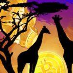 Afrika Sedang Mengalami Kebangkitan Crypto
