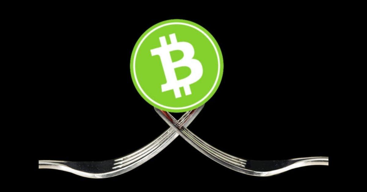 Penambang baru BCHN diuntungkan karena adanya fork