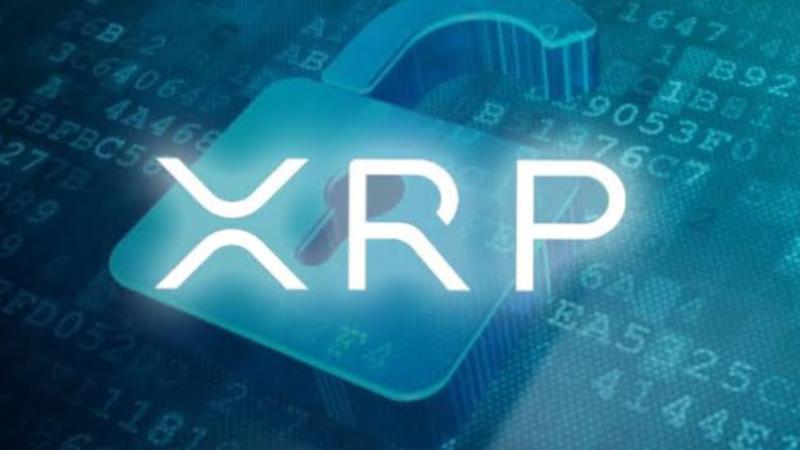 Ripple dan CEO Brad Garlinghouse Menghadapi Gugatan Lain Atas XRP